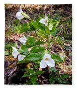 Rare Great White Trilliums Fleece Blanket