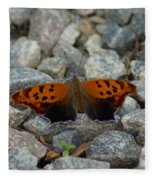 Rarely-sighted Butterfly Species Fleece Blanket