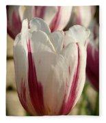 Raspberry Vanilla Tulip Fleece Blanket
