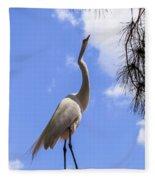 Reach For The Sky Fleece Blanket