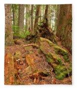 Recycling In The Cheakamus Rainforest Fleece Blanket