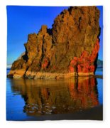 Red And Gold In The Sea Fleece Blanket