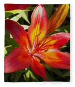 Red And Orange Lilly In The Garden Fleece Blanket