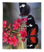 Red And White Longwing Butterflies  Fleece Blanket