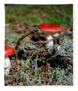 Red And White Mushrooms Fleece Blanket