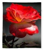 Red And White Rose Fleece Blanket