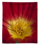 Red And Yellow Poppy 1 Fleece Blanket
