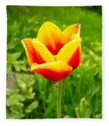 Red And Yellow Tulip Fleece Blanket
