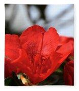 Red April Fleece Blanket