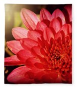 Red Beauty Welcomes The Sun - Flowers Of Summer Fleece Blanket