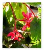Red Begonia Peaking Through The Leaves Fleece Blanket