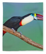 Red-billed Toucan Fleece Blanket