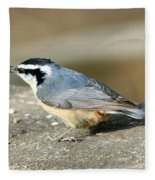 Red-breasted Nuthatch Fleece Blanket