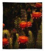 Red Cactus Flowers  Fleece Blanket