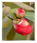 Red Camelia Buds Fleece Blanket