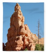 Red Canyon Rock Formation Fleece Blanket