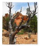 Red Canyon Tree And Rocks Fleece Blanket