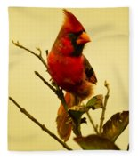 Red Cardinal No. 2 - Kauai - Hawaii Fleece Blanket
