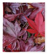 Red Carpet Fleece Blanket