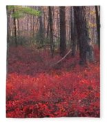 Red Carpet Fleece Blanket