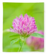 Red Clover Fleece Blanket