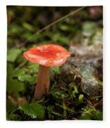Red Coral Mushroom Fleece Blanket