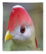 Red Crested Turaco Fleece Blanket