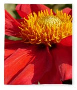 Red Dahlia Coccinea Fleece Blanket