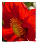 Red Dahlia Elegance Fleece Blanket