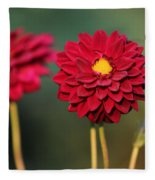 Red Dahlias Fleece Blanket