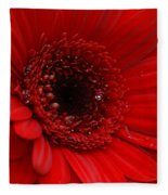 Red Daisy Fleece Blanket