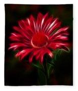 Red Daisy Fleece Blanket