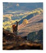 Red Deer Calf Fleece Blanket