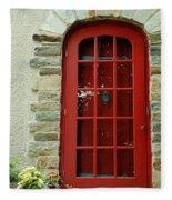Red Door In Baltimore Fleece Blanket