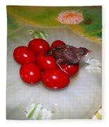 Red Eggs Bird And Flowers Fleece Blanket