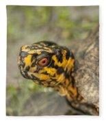 Red Eyed Alabama Box Turtle - Terrapene Carolina Fleece Blanket