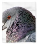 Red-eyed Pigeon Fleece Blanket