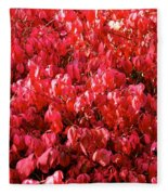 Red Fall Fleece Blanket