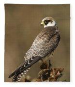 Red Footed Falcon Falco Vespertinus Fleece Blanket