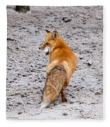 Red Fox Egg Thief Fleece Blanket