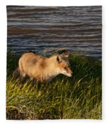 Red Fox Hunting The Edges At Sunset Fleece Blanket