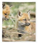 Red Fox Kits Fleece Blanket