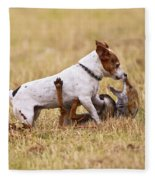 Red Fox Playing With Jack Russell Fleece Blanket