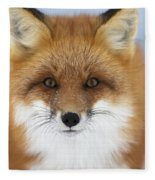 Red Fox Staring At The Camerachurchill Fleece Blanket