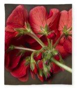 Red Geranium In Progress Fleece Blanket