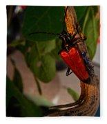 Red Glowing Beetle Fleece Blanket