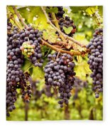 Red Grapes In Vineyard Fleece Blanket