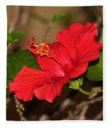 Red Hibiscus Flower Fleece Blanket