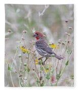 Red House Finch In Flowers Fleece Blanket