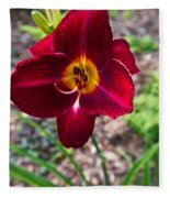 Red Lady Lily 1 Fleece Blanket